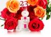 Что подарить девушке на день рождения 23 года
